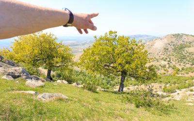 One-day adventure in Dobrogea, Macin Mountains: Tutuiatu Peak